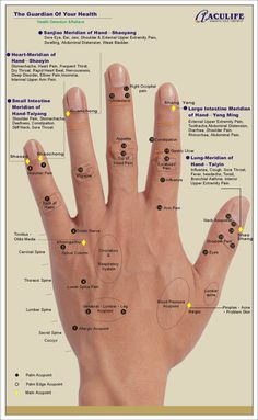 Reflexology back hand chart