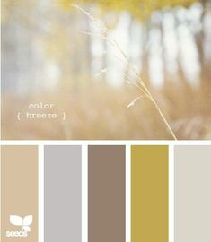 Living room color scheme, blue/grey in Kitchen and mustard or ...