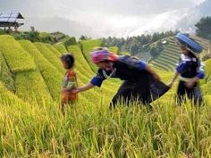 Vietnam family travel with unforgettable memories in breathtaking natural beauty of Vietnam. Family friendly destinations in Vietnam can accommodate all your travel companions particularly family members Us Travel, Family Travel, Real Family, Family Vacations, Vietnam Travel, Family Holiday, Outdoor Activities, Beautiful Landscapes, Good Times