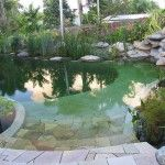 natural swimming pool chemical free australia 05