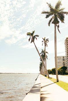 San playa oeste Lucas de la en con California palmeras marítimo Cabo vacaciones Paseo xawOPqUYO