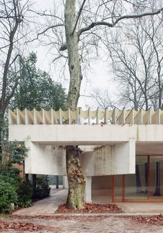 "88900985677: "" sverre fehn - nordic pavilion, venice, 1962 """