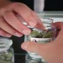 Cannabis Training University - Bud Tender. Budending school. budtender college. budtending certification. cannabis training budtender. budtender jobs. budtnending career.