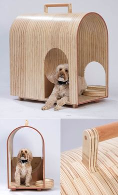 A group of designers & architects including Ivan Djidev, Zaha Hadid, CLA Architects, TLA Studio London & Spark architects have designed one-off doghouses for BowWow Haus London exhibition. About 65 canine shelters are on show until April Pet Beds, Dog Bed, Cool Cat Beds, Pet Hotel, Cat Towers, Wood Dog, Cat Scratching Post, Cat Dog, Pet Furniture