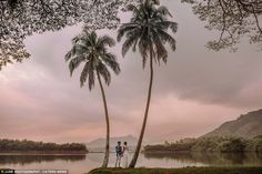 Happily ever after: This dreamy shot was taken at sunset in Kaneoha, Oahu, Hawaii  Read more: http://www.dailymail.co.uk/travel/travel_news/article-3763391/Are-best-destination-weddings-photos-Indonesia-Iceland-breath-taking-images-capture-newlyweds-dreamy-locations.html#ixzz4Ik3CHd4M  Follow us: @MailOnline on Twitter | DailyMail on Facebook
