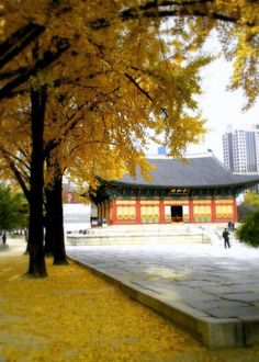 Deoksugung Palace is a great place to see various styles of royal architecture, ranging from traditional hanoks to western-style structures.  It is particularly beautiful in the fall, when the leaves change colors.  Also located on the grounds is The National Museum of Contemporary Art, which houses a nice collection of modern works.  To get there:  Take the subway to City Hall Station (Lines 1 & 2, Exits 2 & 12).