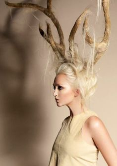 Hair horns