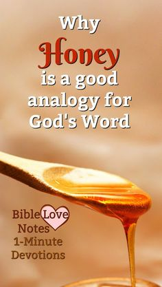 This devotion explains why it's perfect for God's Word to be compared to honey. Starting A Bible Study, Bible Study Tips, Bible Study Journal, Bible Lessons For Kids, Encouraging Bible Quotes, Biblical Quotes, Bible Scriptures, Bible 2, Friend Quotes Distance