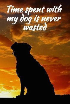 I love the time I spend with my dog buddy. Don't you? #It'sADogsLife #Dogs