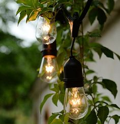 Vintage Style Outdoor Commercial Patio String Light w/Incandescent 11S14 Bulbs, 48-Feet, 15 Lights, 15 Heavy-duty Molded E26 Base Rubber Light Sockets on a 48-feet String, UL Listed for Indoor and Outdoor Use, Add a nostalgic, ambient feeling to any environment Brightown http://www.amazon.com/dp/B00R25V4GA/ref=cm_sw_r_pi_dp_6Z72vb0D65SSJ