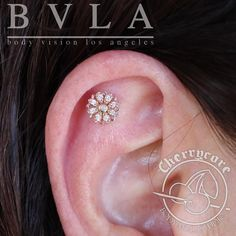 """cherrycorebodymod: """"Check out this beautiful 14g helix """"flat"""" piercing that we did with this AMAZING Rosette end in solid 14k rose gold from BVLA!! @bvla #piercing #piercings #safepiercing #internalthreadtitanium #melbourne #melbourneiloveyou..."""