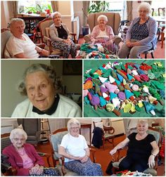 The Fairfax Court Forest The Fairfax Court Yarnstormers have made a fantastic contribution to the Tree Leaves Yarnstorm Installation. Leaf Projects, Extreme Knitting, Conifer Trees, Finger Knitting, Tree Leaves, Trees To Plant, Bloom, Tree Planting