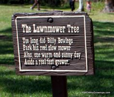One of the must-see attractions is the Lawnmower Tree, which is an urban legend at Disney's Fort Wilderness Resort. Legend has it that Billy Bowlegs parked his mower too long - and a tree grew around it! Read this article for more info about this Fort Wilderness delight: http://ow.ly/agw9f