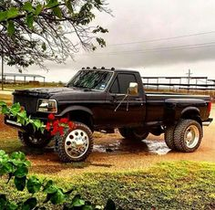 Look babe! LWC Big Ford Trucks, Trucks Only, Classic Ford Trucks, Cool Trucks, F350 Dually, Ford Powerstroke, Dually Trucks, Mudding Trucks, Lifted Trucks
