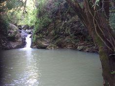 Vista de Poza en Amatlan