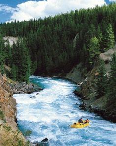 #white #river #rafting #fun !
