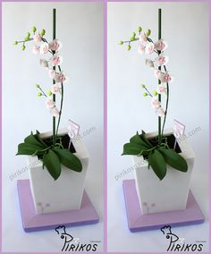 Orchid Cake ~ an edible orchid in a chocolate vase cake