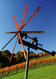 Die Region rund um die Pension Sauer in Straß in der Steiermark #pensionsauer #steiermark