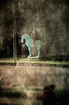 horse by Jack Barnosky on 500px