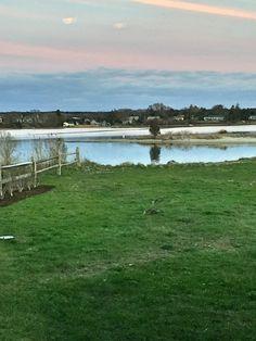 Lagoon Pond, Vineyard Haven, MA - April, 2016