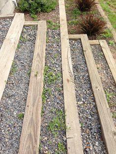 steps to leach field and lower 40 Yard Landscaping, Garden Paths, The Great Outdoors, Outdoor Spaces, Fields, Backyard, Walkways, Porches, Landscapes