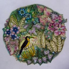 Finished Toucan Round by Chris Cheng - video tutorials posted posted on  my board