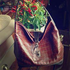 "Selling this ""Authentic Dooney & Bourke Croc handbag"" in my Poshmark closet! My username is: bogrady0123. #shopmycloset #poshmark #fashion #shopping #style #forsale #Dooney & Bourke #Handbags"