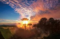 parque nacional nahuelbuta Chile, Celestial, Sunset, Outdoor, National Parks, Sunsets, Outdoors, Chili Powder, Chilis