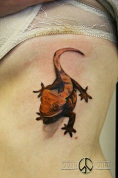 My crested gecko tattoo, first tattoo I got, Natalie.W #samaelcahill #reptile #tattoo   tattoos picture gecko tattoo