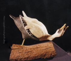 Audubon style 'hissing eider' decoy carved  by Jay Miles with an antique patination.   Please visit Kicking Bull Gallery on Facebook