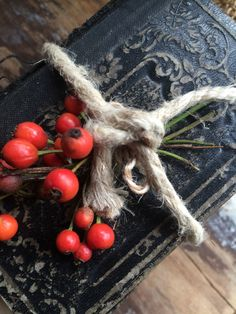 Rosehips and an old bible ~ SEES Brocante