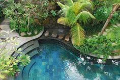 Tropical landscape design at villa batavia, bali by bali landscape company Tropical Garden Design, Tropical Backyard, Backyard Pool Landscaping, Landscaping Company, Tropical Landscaping, Courtyard Pool, Backyard Retreat, Landscaping Tips, Tropical Plants