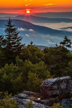 Summer Sunrise, Dolly Sods Wilderness Area, Monongahela National Forest, West Virginia. photographer Randall Sanger.