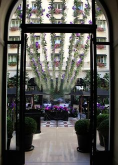 King George Hotel Paris decorated with Vanda-Orchids.. A beautiful hotel decorated with one of my favorite flowers in my favorite city :-)