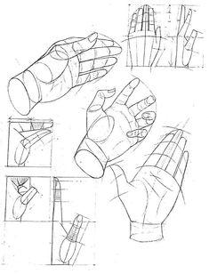 handen tekenen anatomie - Google zoeken