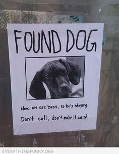 haha.. i love the sentiment, but am grateful for vets and microchiping. not all pets are lost out of neglect.