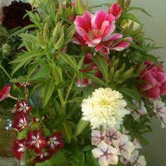field-to-vase-sacred-bough-farm-3