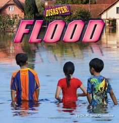 Flood (It's a Disaster!) by M. Jean, Dr. Greenlaw http://www.amazon.com/dp/1627241299/ref=cm_sw_r_pi_dp_IZ4mxb0FV2JH2