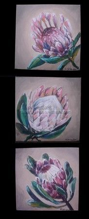 Protea Art, Protea Flower, Watercolor Disney, Watercolour, Funny Art, Disney Art, Funny Kids, Art Tutorials, Painting Inspiration