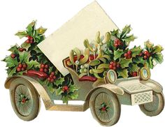 Rosas de Verônica: Imagens de Natal