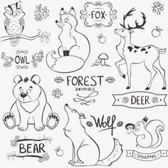 Illustration Set Of Cute Animals Of The Forest With Design Names Royalty Free Cliparts, Vectors, And Stock Illustration. Image Vector - Illustration set of cute animals of the forest with design names