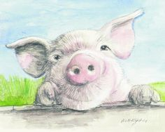 Fitztown Farm Pig Painting by Morgan Fitzsimons - Fitztown Farm Pig Fine Art Prints and Posters for Sale