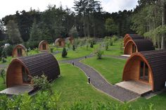 Falcon Forest Glamping pods