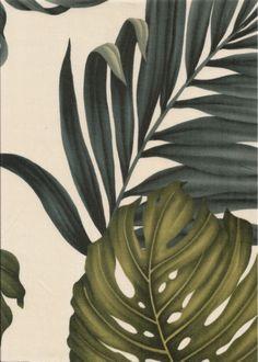 30monstera tropical leaves, apparel cotton, tropical Hawaiian vintage style fabric.  More fabrics at: BarkclothHawaii.com