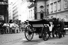 ENGELS-GEDULD   Geduldig warten die Fiaker hinter dem Stephansdom auf eine Fahrt... Walking, Cannon, Vienna, Guns, Pictures, Patience, Waiting, Weapons Guns, Walks