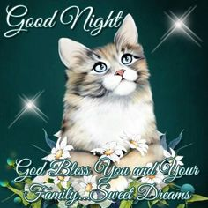 Image shared by Cheri Carlson. Find images and videos about family, good night and sweet dreams on We Heart It - the app to get lost in what you love. Good Night Meme, Funny Good Night Images, Good Night Family, Lovely Good Night, Good Night Prayer, Good Night Everyone, Good Night Friends, Good Night Blessings, Good Night Messages