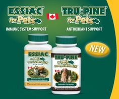 2 Essiac for Pets 60 capsules and 1 Tru-Pine for Pets 60 capsules ** Check this useful article by going to the link at the image.