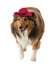 Rubies Red Cowboy Hat Dog Costume * Read more at the image link.