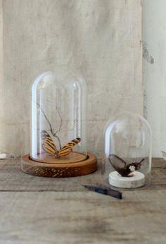 v i n t a g e glass display dome by Harmonicajane on Etsy