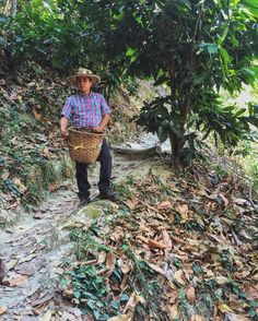 Reflecting back on one of our favorite #travelmoments: getting a tour of La Candelaria Organic Coffee Farm in Minca, Colombia 🇨🇴 ☕️ Here our lovely host/tour guide/professional coffee grower shows us how to find the perfect coffee bean. Such a laborious process! Thank the farmer 👨🌾 next time you reach for your morning joe. ________________________________________________ #colombia #coffee #farmer #tour #igtravel #southamerica #colombian #coffeebean #seetheworld #learning #travelinspo…